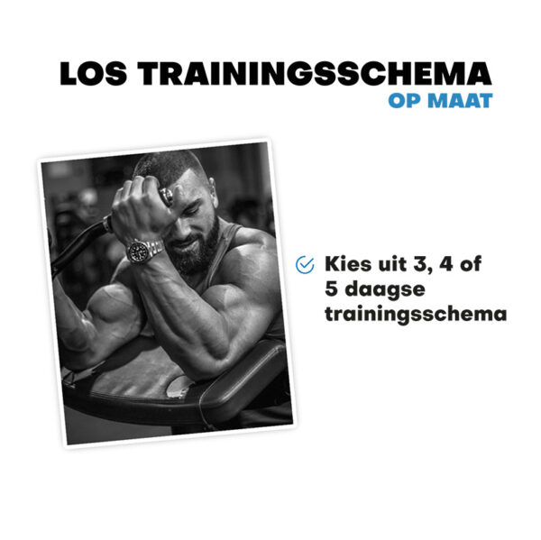 los trainingsschema